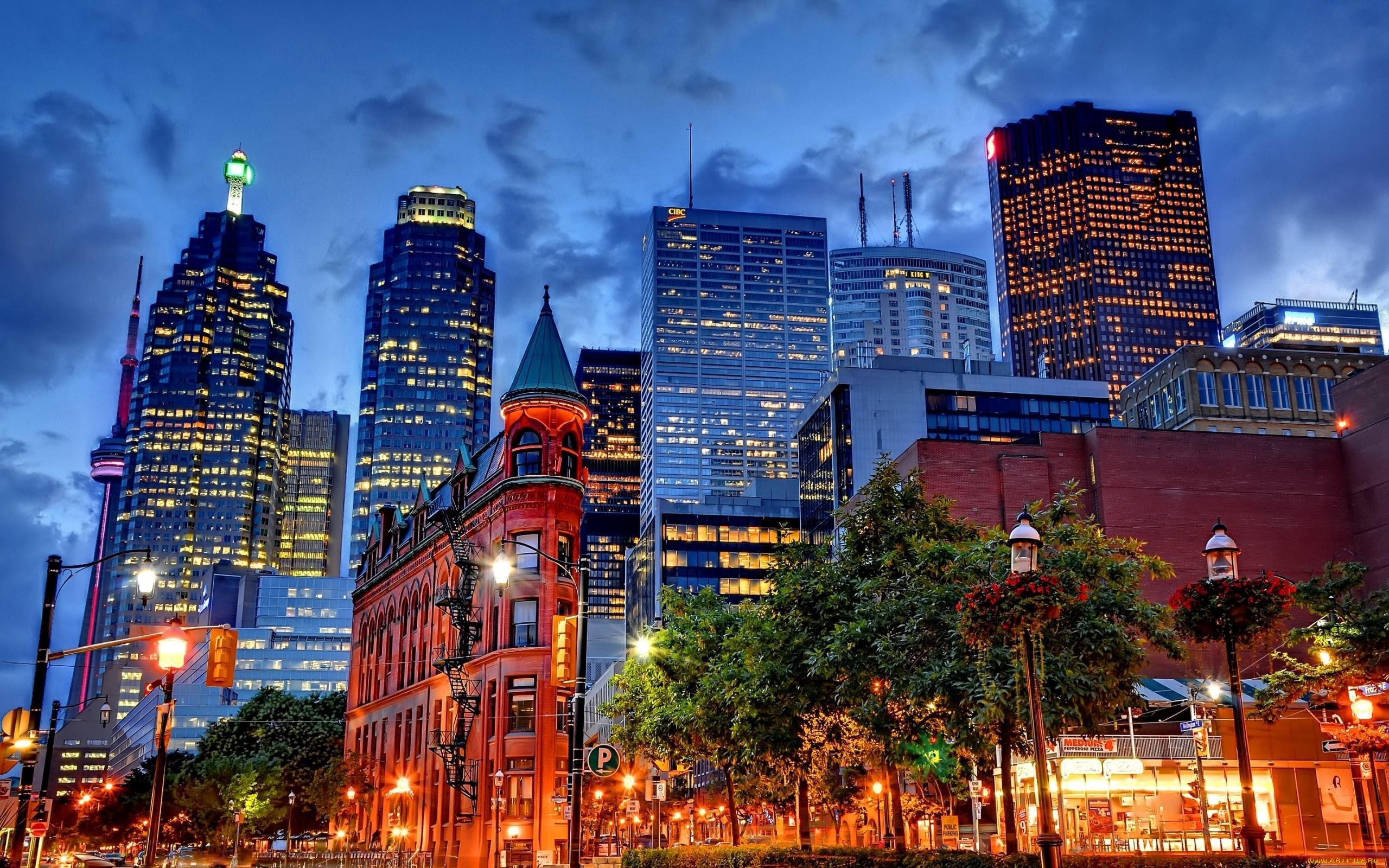 город торонто канада фото докторской